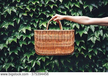 Hand Holding Rattan Eco Basket For Food Or Lunch In The Garden Among Plants. Eco-friendly Concept Of