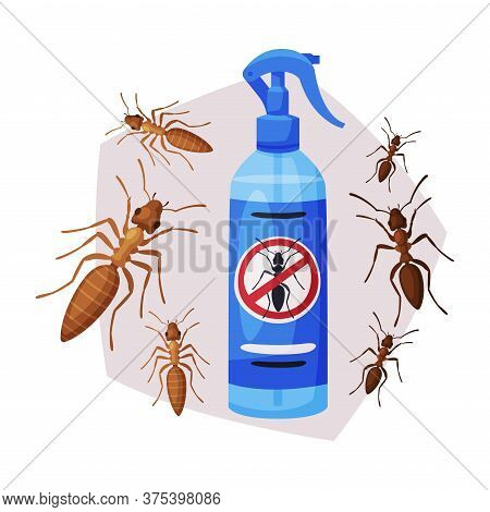 Sprayer Bottle Of Ant And Termite Insecticide, Pest Control Service, Detecting And Exterminating Ins