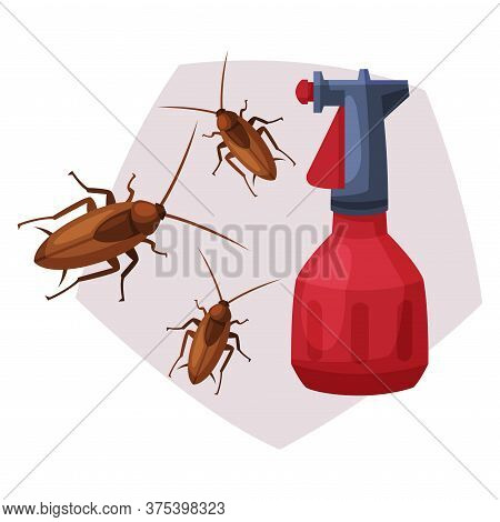 Sprayer Bottle Of Cockroach Insecticide, Pest Control Service, Detecting And Exterminating Insects V