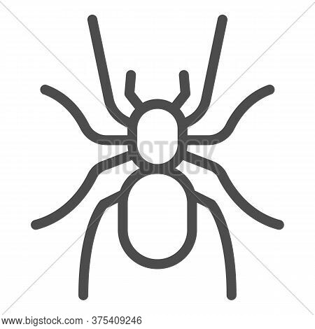 Tarantula Line Icon, Insects Concept, Scary Big Spider Sign On White Background, Dangerous Tarantula