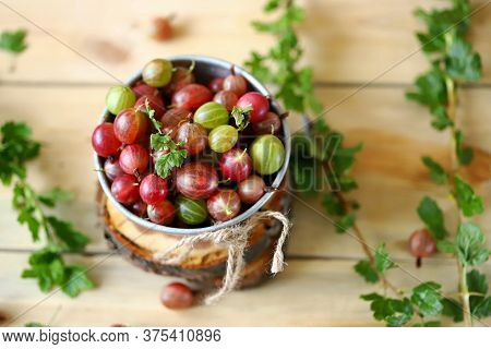 Selective Focus. Macro. Gooseberries In A Bowl On A Wooden Surface. Gooseberry Leaves And Branches.