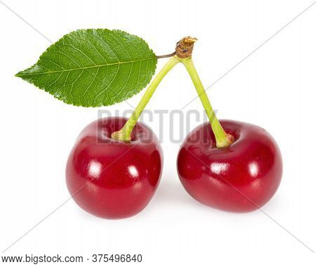 Two Ripe Cherries Isolated On White Background.