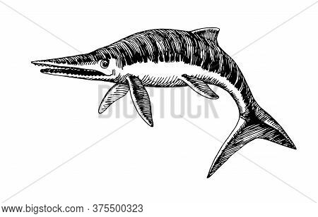 Prehistoric Reptile Of The Jurassic Period, Giant Ichthyosaur With Fins, Sea Raptor, Vector Illustra