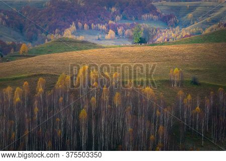 Old Barn House On Top Of A Hill With Some Cows Around The Barn On An Autumn Day And Mountains In The