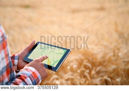 Precision Farming. Farmer Hands Hold Tablet Using Online Data Management Software With Maps At Wheat