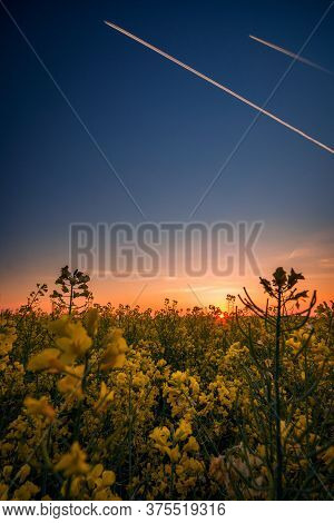 Beautiful Shot Of A Canola Field In The Morning At Sunrise Against Two Passing Airplanes On The Sky