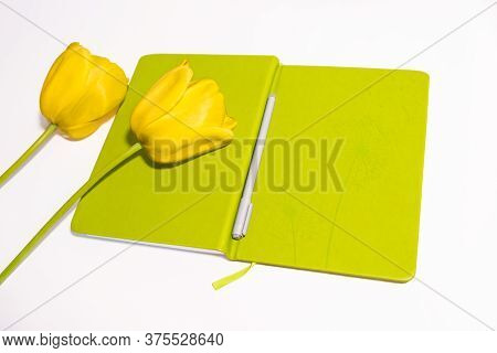 Yelow Tulip Flowers Are On The White Table And Diary With Pen Top View