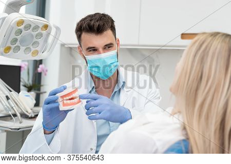 Dentist Holding Jaw Samples Tooth. Professional Consultation In Dental Clinic