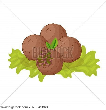 Falafel - Dish Jewish Traditional Food. Vector Flat Color Icon. Isolated On White Background.
