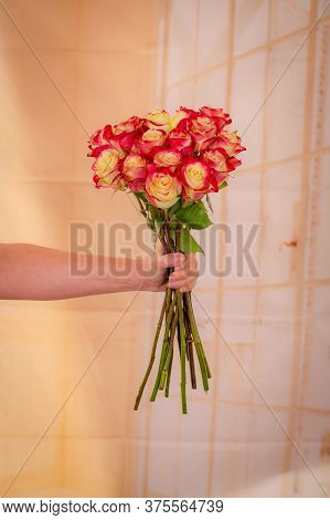 Women Hand Holding A Bouquet Of Her Majestic Roses Variety, Studio Shot, Dual Tone Flowers