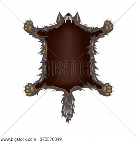 Crucified Grey Wolf Skin With Head, Fangs, A Tail And Paws, For Logo Or Emblem, Interior Element, Co