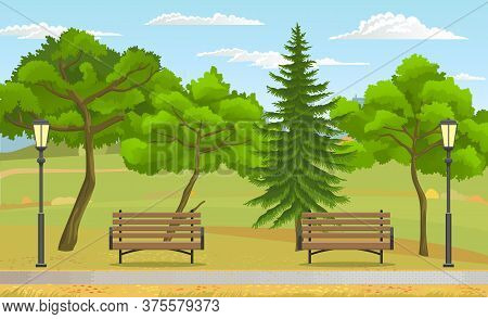 Public Park At Summer. Green Nature, Wooden Benches And Street Lights, Trees, Fir Tree, Sky At Backg