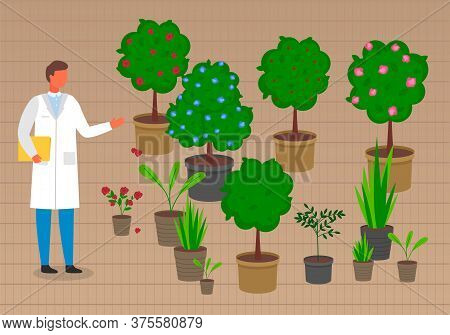 Grower Or Laboratory Assistant Near Pots With Trees, Sprouts, Flowers, Growing Plants In Pots With S