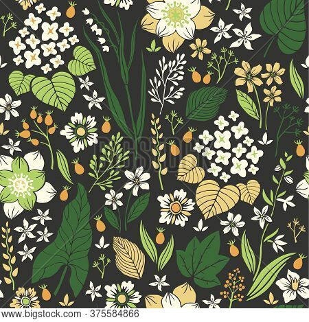 Abstract Hand Drawn Flowers And Herbs, Vintage Floral Vector Seamless Pattern, Template For Textile,
