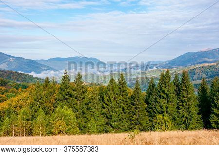 Wonderful Autumn Landscape In Evening Light. Open View With Forest On The Meadow In Front Of A Dista