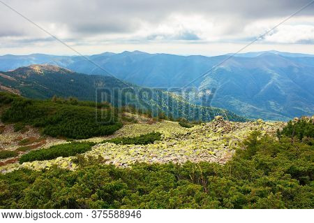 Mountain Landscape With Green Stones. Juniper Tree Among The Rocks And Grass. Dramatic Nature Scener