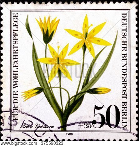 02 08 2020 Divnoe Stavropol Krai Russia The Postage Stamp Germany West Berlin 1980 Flowers Plants We