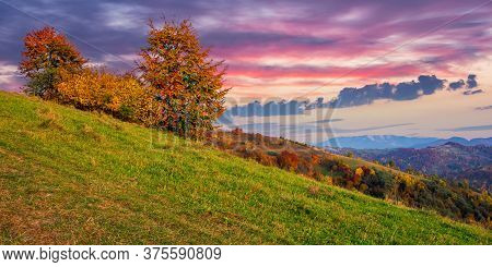 Autumnal Rural Landscape At Dusk. Beautiful Countryside In Mountains. Trees In Fall Foliage On Green