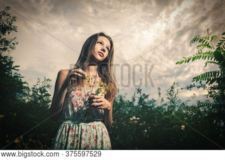 Nice Girl Wears A Light Summer Dress And Stands In High Grass And Holds A Bouquet Of Wild Flowers Of