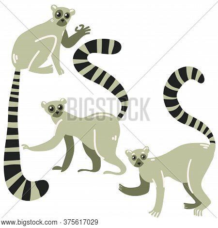Set Of Three Lemurs. Cute Cartoon Animals From The Jungle.