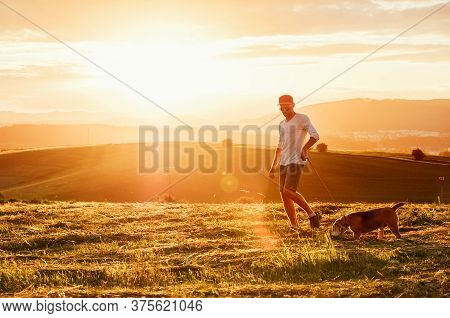 Middle-aged Man Dressed Light White Sweater And Jeans Shorts Walking With His Beagle Dog During Suns