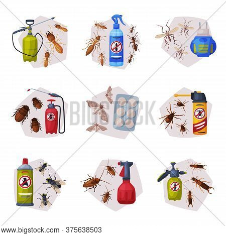 Harmful Insects Insecticides Set, Pest Control Service, Detecting And Exterminating Insects Vector I
