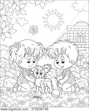 Little Children Brushing Their Cheerful Small Papillon Puppy For A Walk On A Sunny Summer Day, Black
