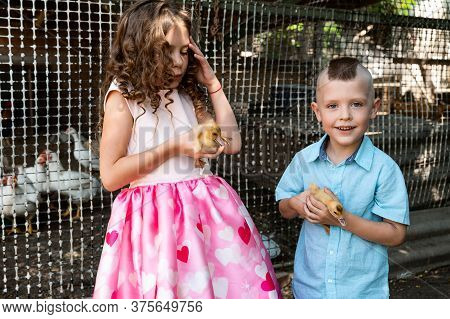 Brother And Sister On A Bird Farm Holding Ducklings In Their Arms
