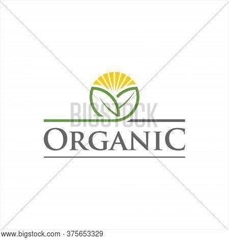Agriculture Logo Organic Badge Leaf And Sunshine Vector Simple Modern Design Template