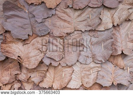Leave Wall Made By Dry Teak Leaf .