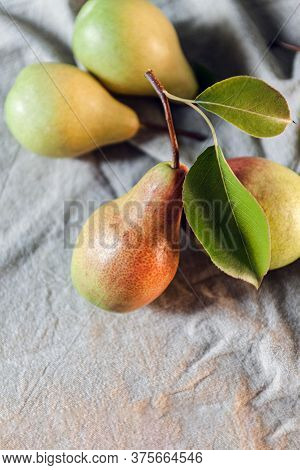 Ripe Pears Are Scattered On A Plain Linen Tablecloth. Simple Village Life And Food. Top View, Copy S