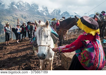 Vinicunca, Peru- October 29: Female Guide In Traditional Wear Holds White Mule At High Altitude Grou