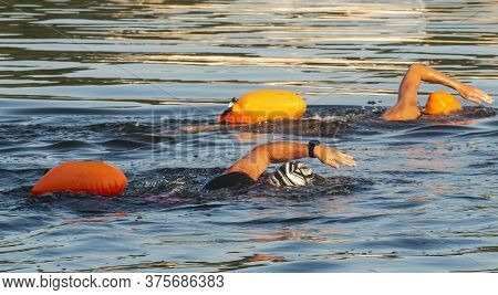 Two Women Freestyle Swimming Wearing Weatsuits In The Bay Trainining For Triathlons With Orange Saft