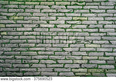 Brick Wall Background Texture With Green Nature Grass