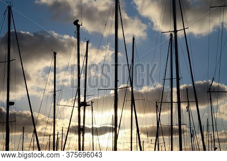 Yacht Masts On A Background Of Cloudy Sky Before Sunset