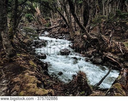 Lago Del Desierto, Argentina. January 18 2019. A Pristine Landscape Of A Stream, Vegetation And Rock
