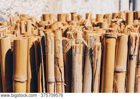 Abstract Background Of Wooden Bamboo Yellow Sticks