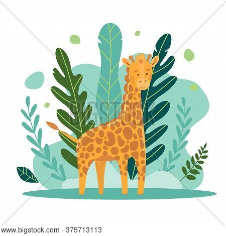 Vecton Illustration Of A Cute Giraffe On A Background Of Castings And Jungle Forest. Cute Cartoon An