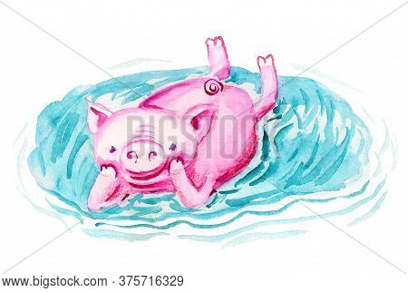 Happy Pig Is Relaxing In The Puddle. Watercolor Image Isolated On White Background.