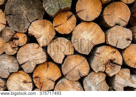 Round Firewood Stacked At Woodpile. Wood Background And Texture.