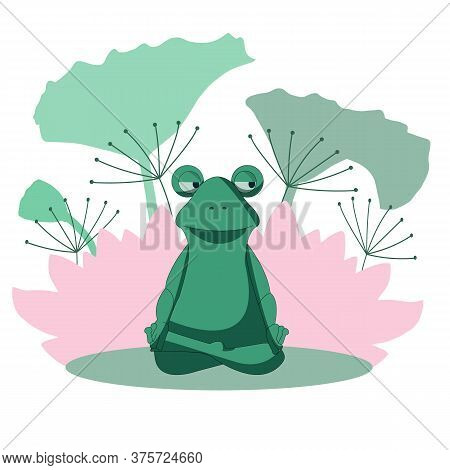 Frog In The Lotus Position. The Frog Does Yoga. Calm And Zen.