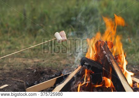 Roasting Marshmallows On A Campfire During Camping In Nature. Marshmallows On Sticks Over A Bonfire.