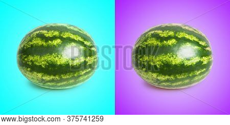 One watermelon isolated over cyan and purple background