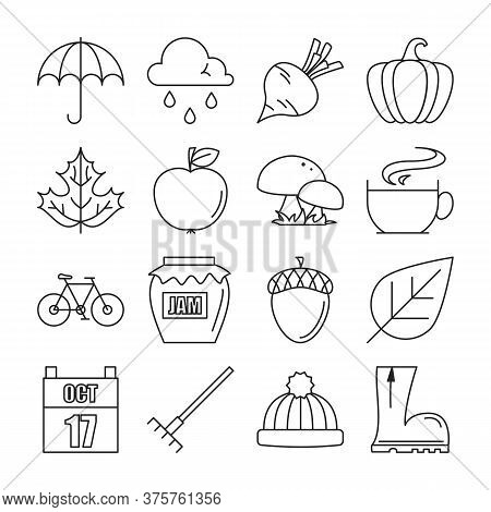 Autumn Icons Collection. Set Of Line Symbols