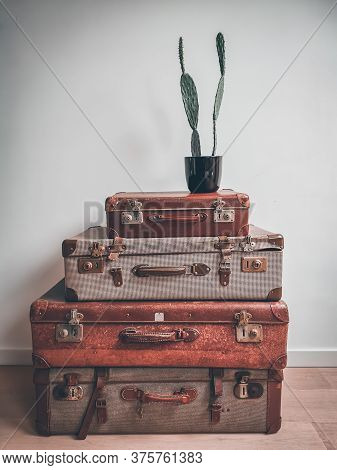 Vintage Interior With Old Reused Suitcases As Smart Storage Space And A Cactus