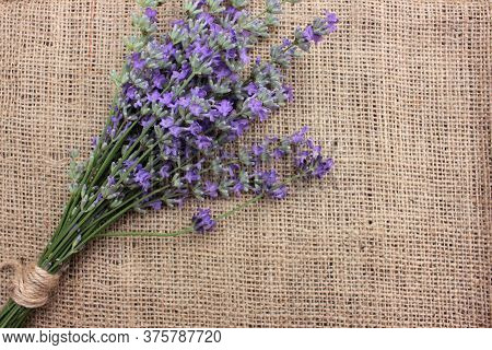 Bunch Of Lavender Flowers On Burlap Fabric Texture. Close-up, Top View, Copy Space, Selective Focus