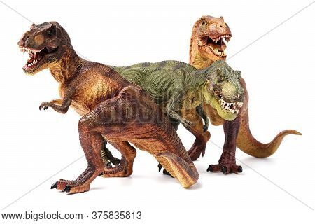 Family Of Two Brown Tyrannosaurus Dinosaurs And A Green Head Isolated On A White Background