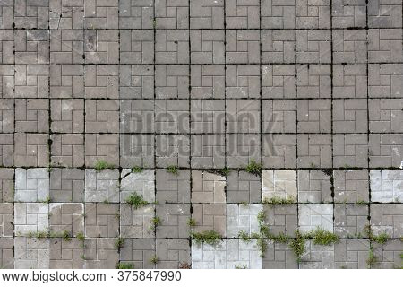 Old paving slabs with sprouted grass, background