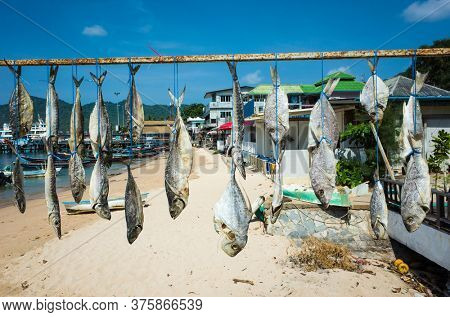Row of dried fish hung outside on sun under blue sky on Koh Tao tropical island, Thailand
