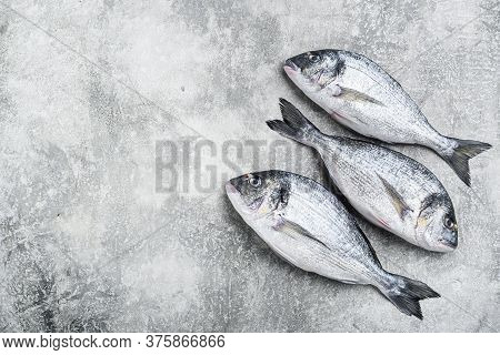 Whole Dorado Sea Bream Fish With Herbs For Grill Over Textured Grey Background  Top View Space For T